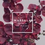 ¿Y tú, ya sabías que el Marsala es el color del año 2015?